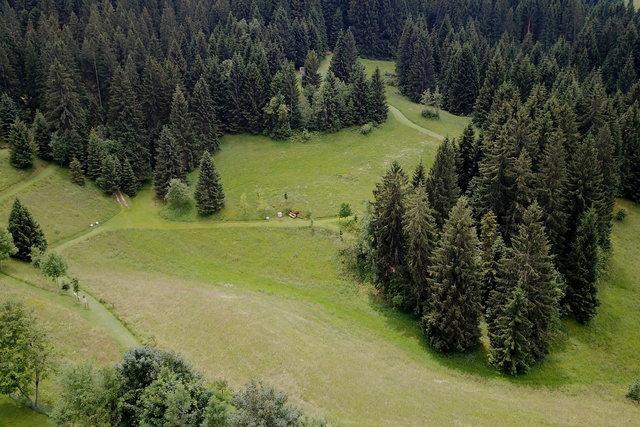 percorsi tra i boschi