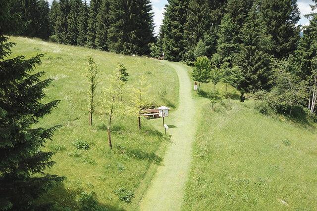 sentiero nei prati del villaggio